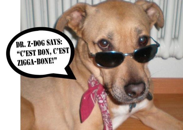 Dr.Z-Dog